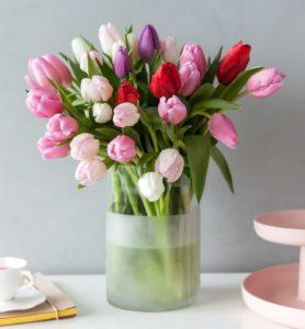 Tulipantorsdag hos Mester Grønn